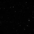 Arp 31