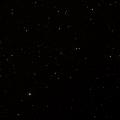 Arp 14