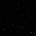 HIP 81377