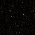 NSV 11624