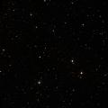 NSV 8664