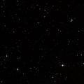 HD 42818