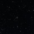 NSV 13388