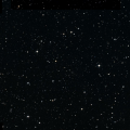 HD 199169