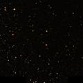 NSV 7785
