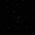 HD 42341
