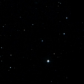 HIP 37441