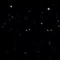 NSV 7950