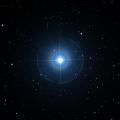 HD 24706