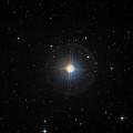 HIP 21137