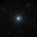 HIP 50292