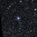 NGC 2313