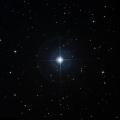 HD 41125