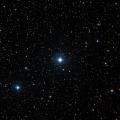 HIP 40878