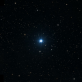 HD 83343
