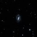 NGC 2916