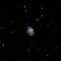 NGC 2988
