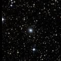 NGC 3005