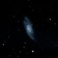 NGC 3006