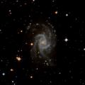 NGC 3135