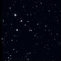 NGC 3137