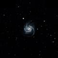 NGC 341