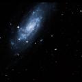 NGC 5029