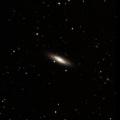 NGC 6445