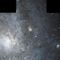 NGC 664
