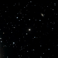 IC 331