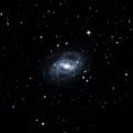 IC 334