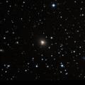 IC 335