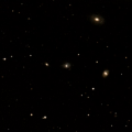 IC 446