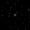 IC 499