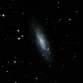 IC 516