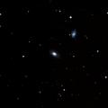 IC 1241