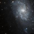 IC 1254
