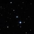 IC 1313
