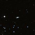 IC 1336