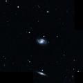 IC 4299