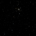 IC 4329
