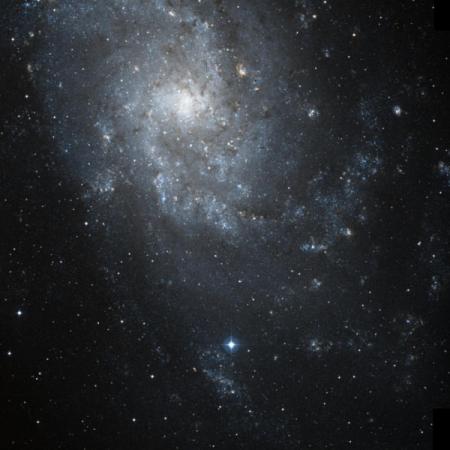 Image of IC 137