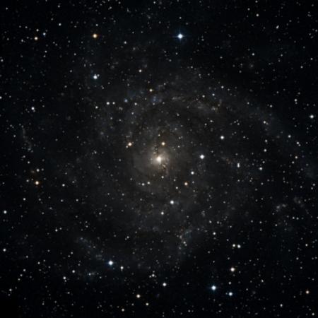 Image of C 5
