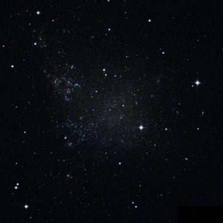 Image of C 51