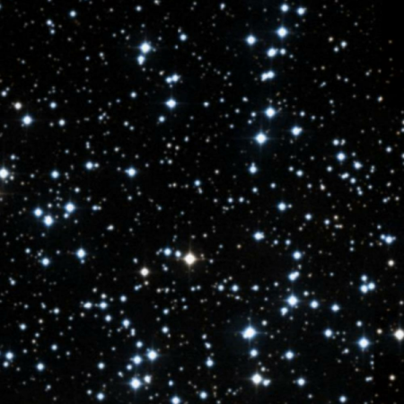 Image of Starfish Cluster