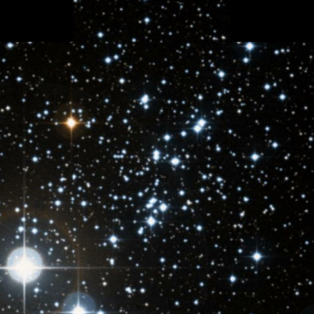 Image of Owl Cluster