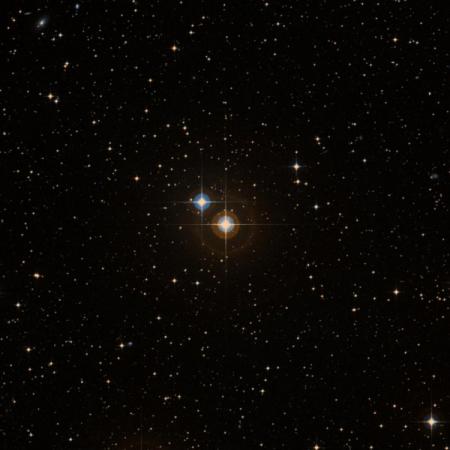 Image of HR 2329
