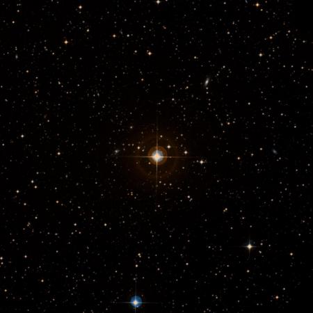 Image of SX Col