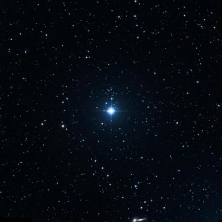 Image of 4-Lyn