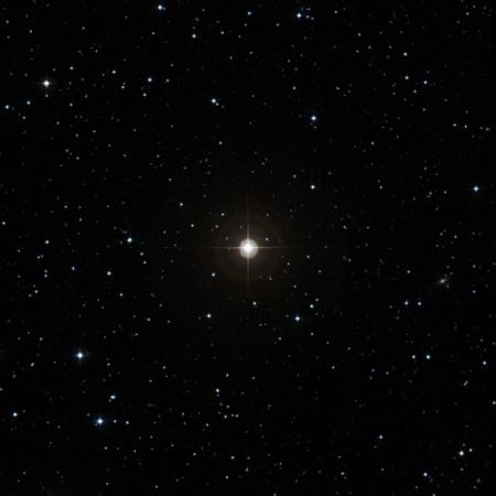 Image of 21-Cnc